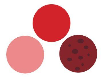 ظهور دم بني خلال الدورة الشهرية