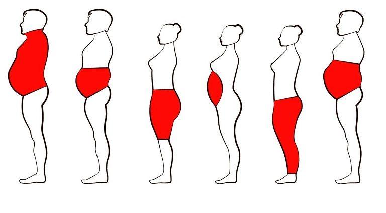 6 أماكن لتركز الدهون في الجسم وطريقة التخلص من الدهون فيها