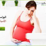 مشكلة البواسير للحامل