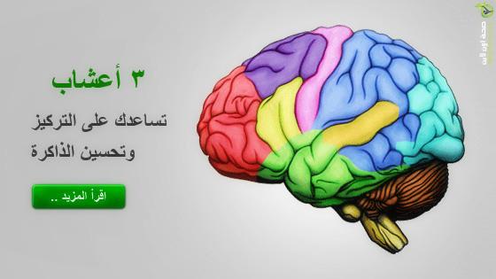 ثلاثة أعشاب تساعدك على التركيز وتحسين الذاكرة