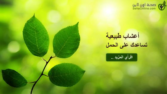 أعشاب طبيعية تساعدك على الحمل