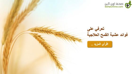 تعرفي على فوائد عشبة القمح العلاجية