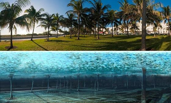 بالصور مدن المستقبل كيف سيكون شكلها مع ارتفاع منسوب المياه