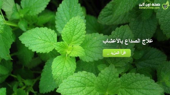 علاج الصداع بالأعشاب