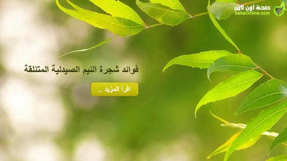 فوائد شجرة النيم الصيدلية المتنلقة