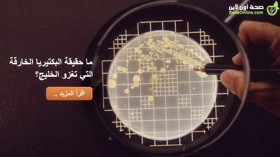 ما حقيقة البكتيريا الخارقة التي تغزو الخليج
