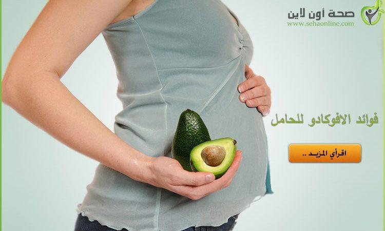فوائد الأفوكادو للحامل ما هي فوائد الافوكادو للمرأة الحامل
