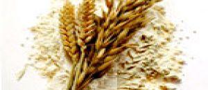 السعرات الحرارية في دقيق القمح