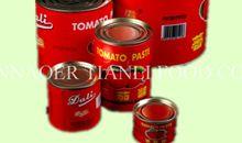 صلصة الطماطم للسباغيتي المعلبة
