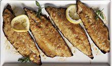 سمك الماكريل مخبوز او مشوي