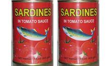 سمك السردين المعلب في صلصة الطماطم