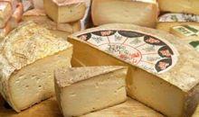 صلصلة الجبنة الإيطالية