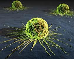 علاج جديد للسرطان طوره الباحثون من الفيروسات البيولوجية