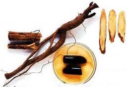 الألمان يختارون نبتة العرقسوس كأفضل نبتة طبية لعام 2012