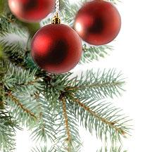شجرة الميلاد تسبب الأمراض للمحتفلين برأس السنة