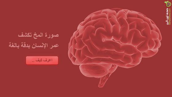 صورة المخ تكشف عمر الإنسان بدقة بالغة