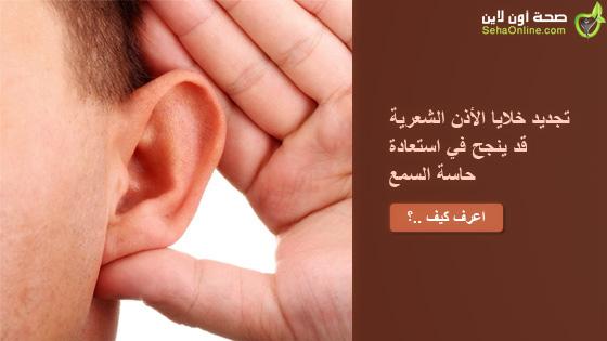 تجديد خلايا الأذن الشعرية قد ينجح في استعادة حاسة السمع
