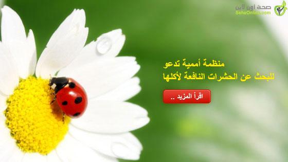 منظمة أممية تدعو للبحث عن الحشرات النافعة لأكلها