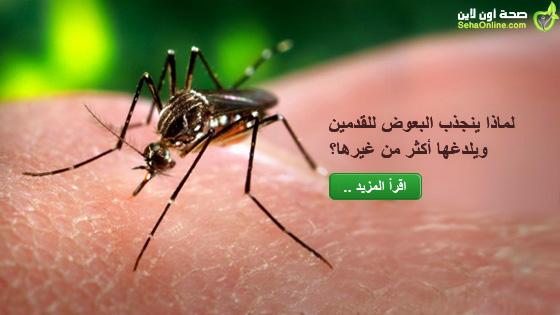لماذا ينجذب البعوض للقدمين ويلدغها أكثر من غيرها