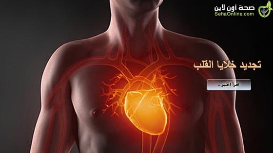 العلماء يتوصلون لطريقة تجديد خلايا القلب بعد النوبة القلبية